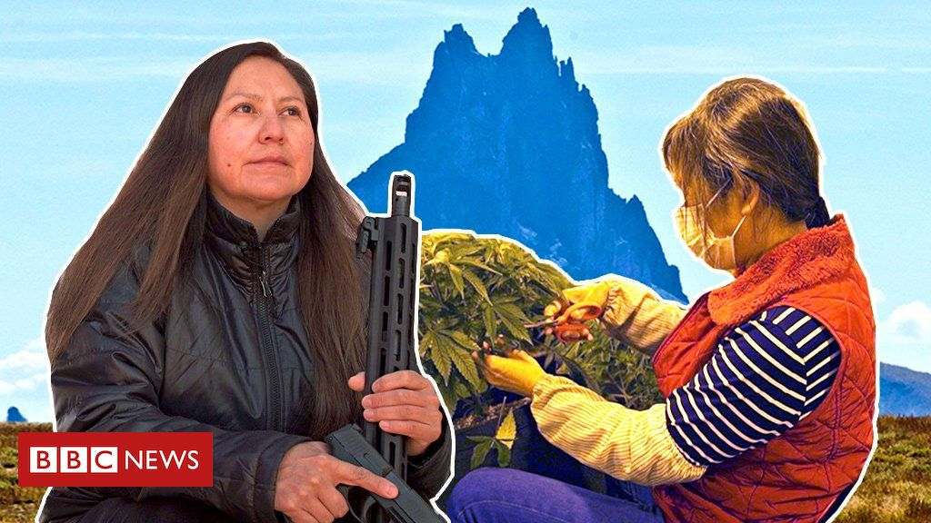Chinese dreams on Native American land: A tale of cannabis boom and bust