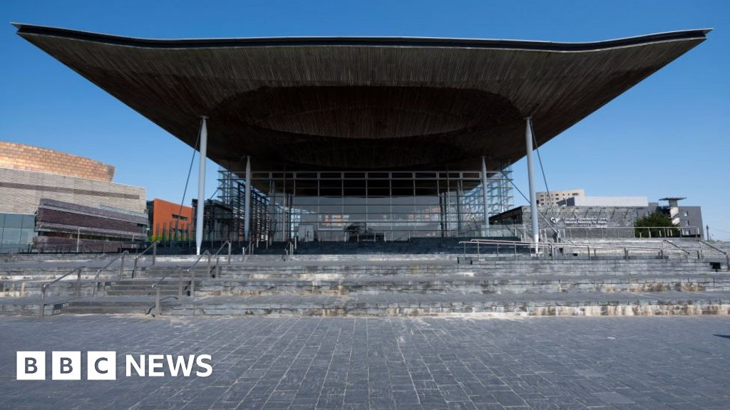 AMs back Senedd Cymru/Welsh Parliament for new assembly name