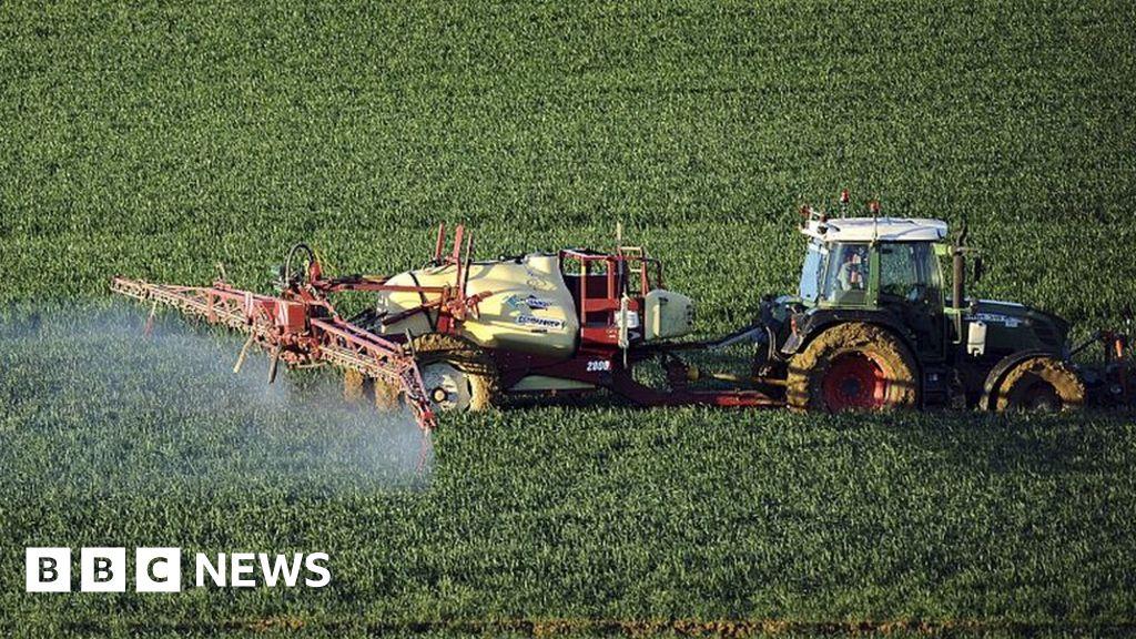 How fertiliser helped feed the world