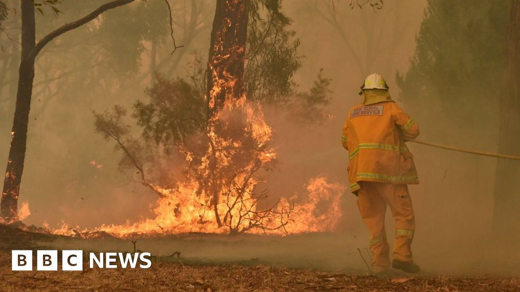 Australia fires:  Not much left  of town ravaged by bushfire