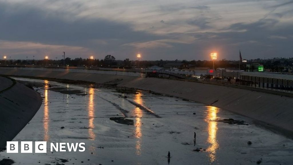 Mexican deported from US kills himself