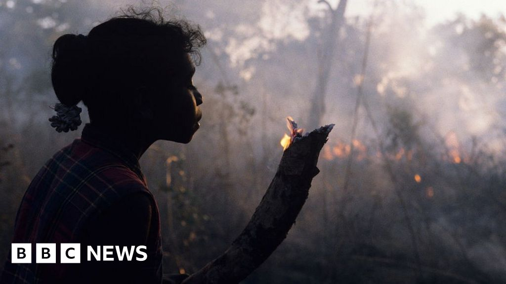 Australia fires: Aboriginal planners say the bush 'needs to burn'