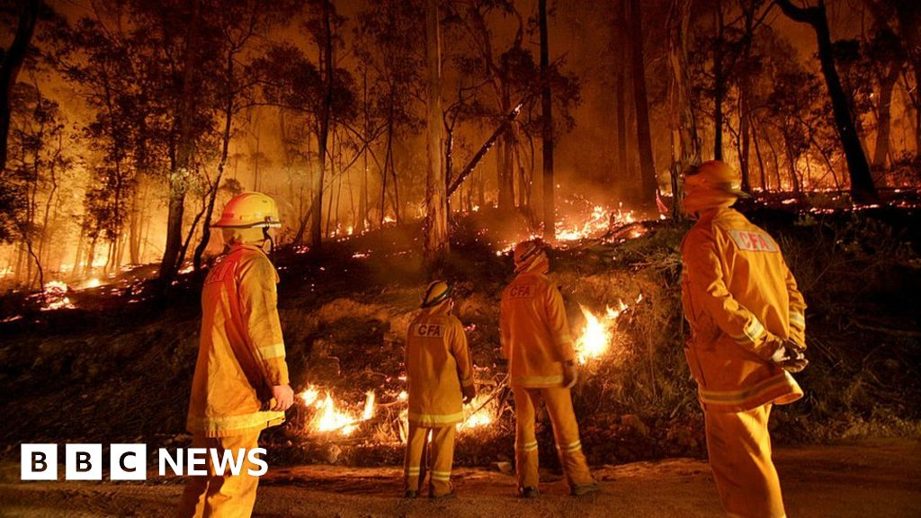 Australia fires: Power controlled burn really work?