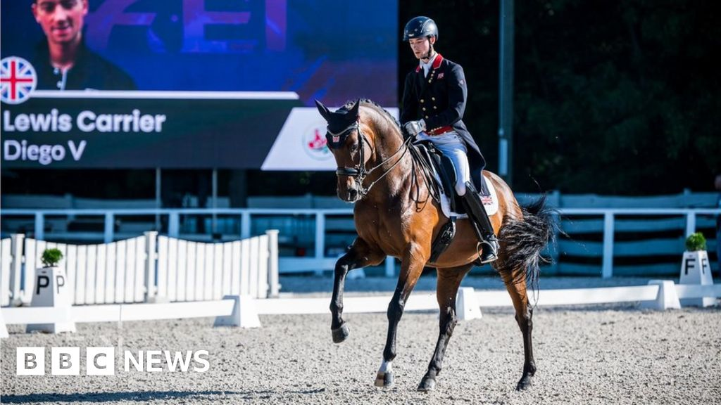Dressage: How to make a horse dance