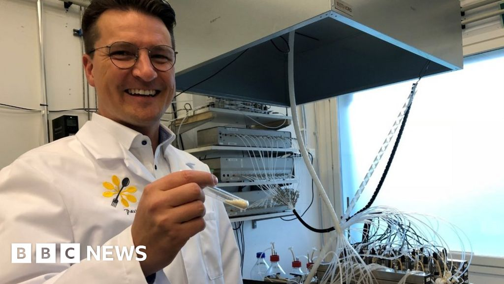 Food 'made from air' could compete with soya