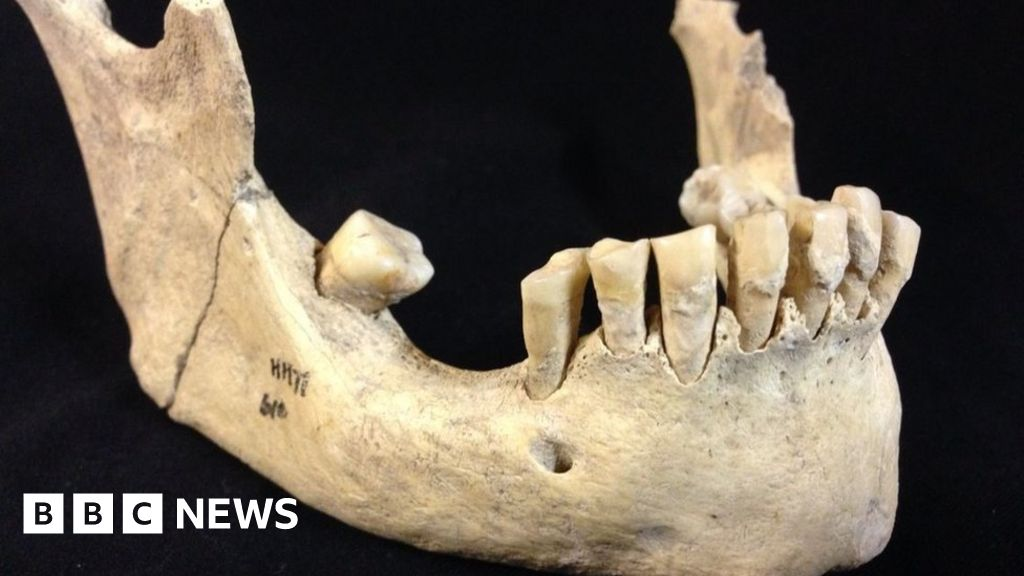 Earliest evidence of milk consumption found