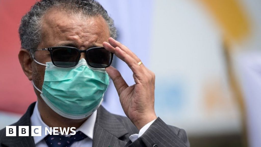 Covid: WHO urges China to co-operate better in virus origin probe