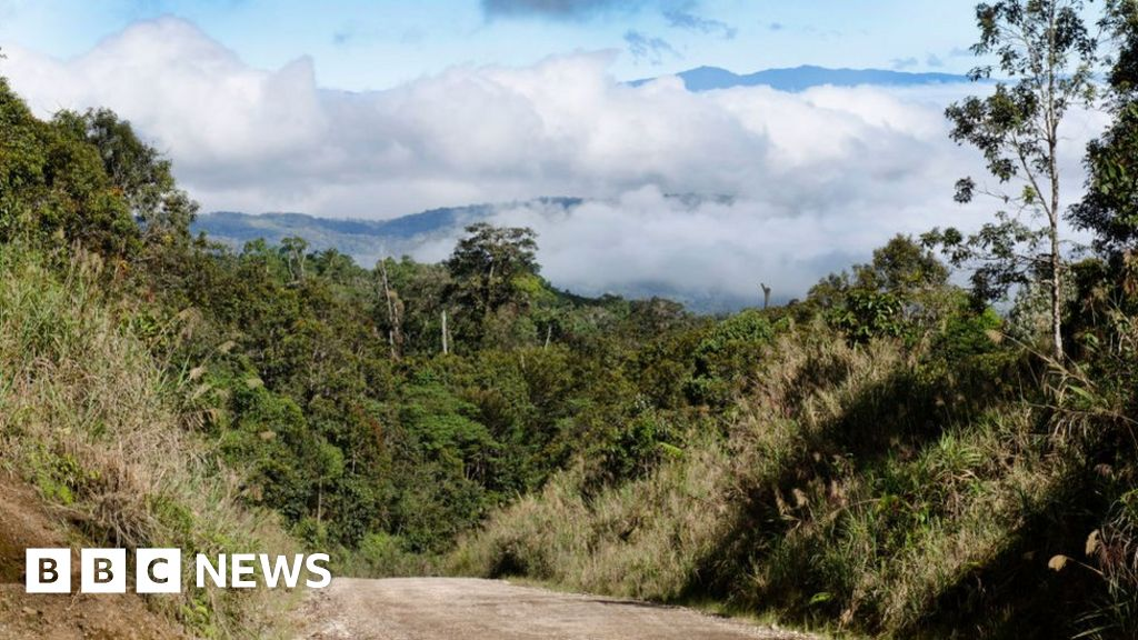 Women and children killed in PNG tribal massacre