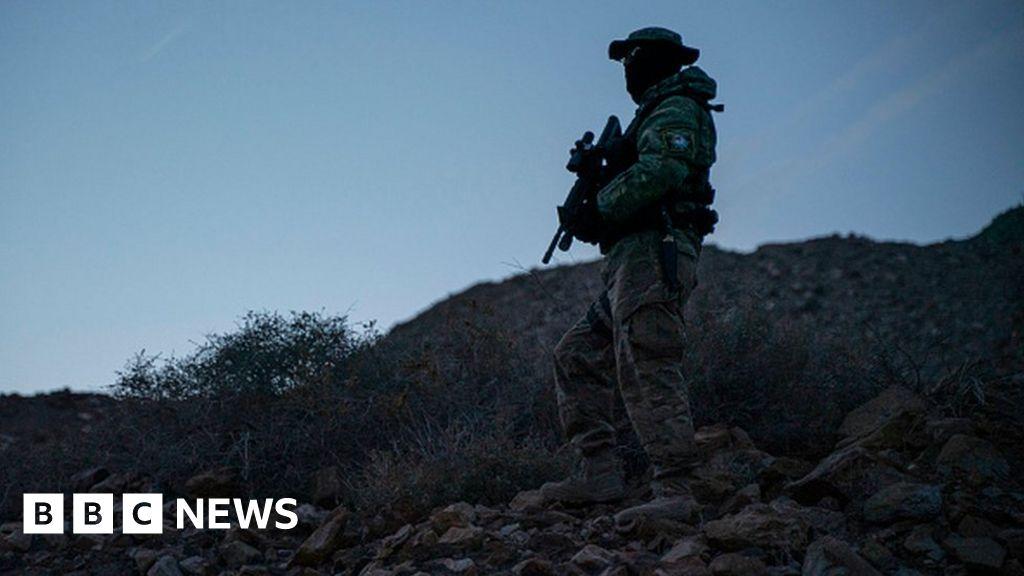 US 'border militia member' arrested