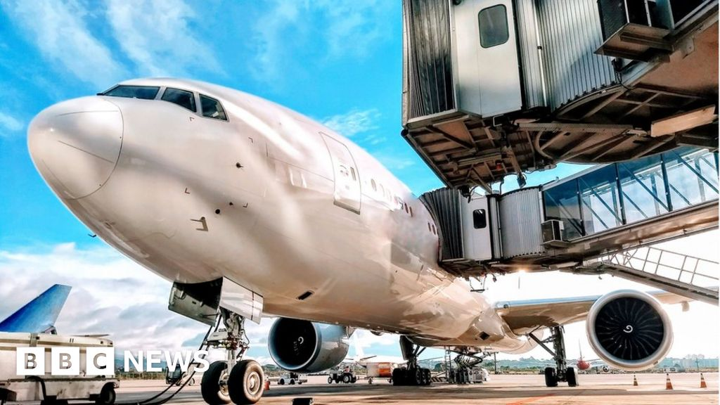Coronavirus: do not bail out airlines, say climate activists
