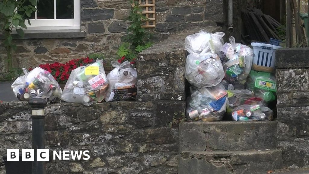 Working from home blamed for Leeds bin collection cost rise