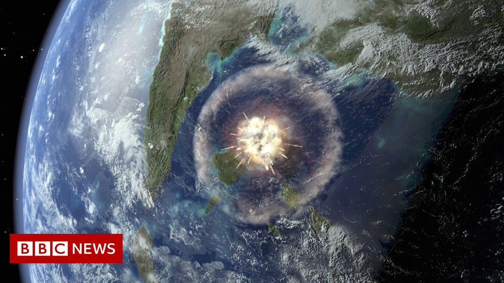 Dinosaur-killing asteroid strike gave rise to Amazon rainforest