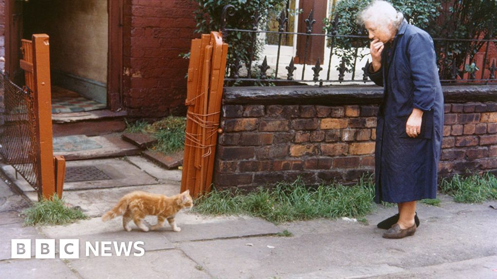Shirley Baker's avenue scenes of Manchester and Salford thumbnail