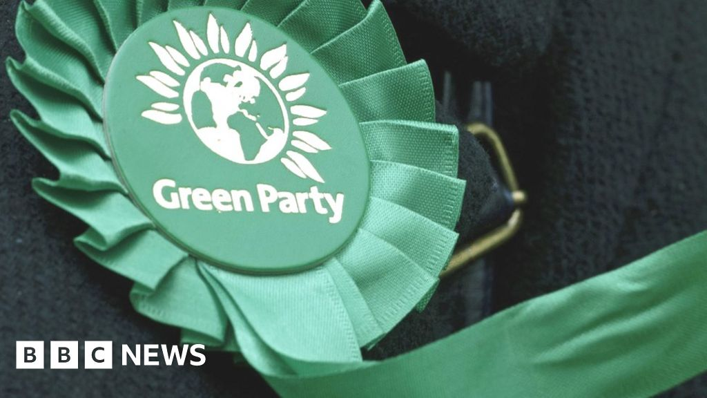 General election: Wales Green's leader says country does not need an airport
