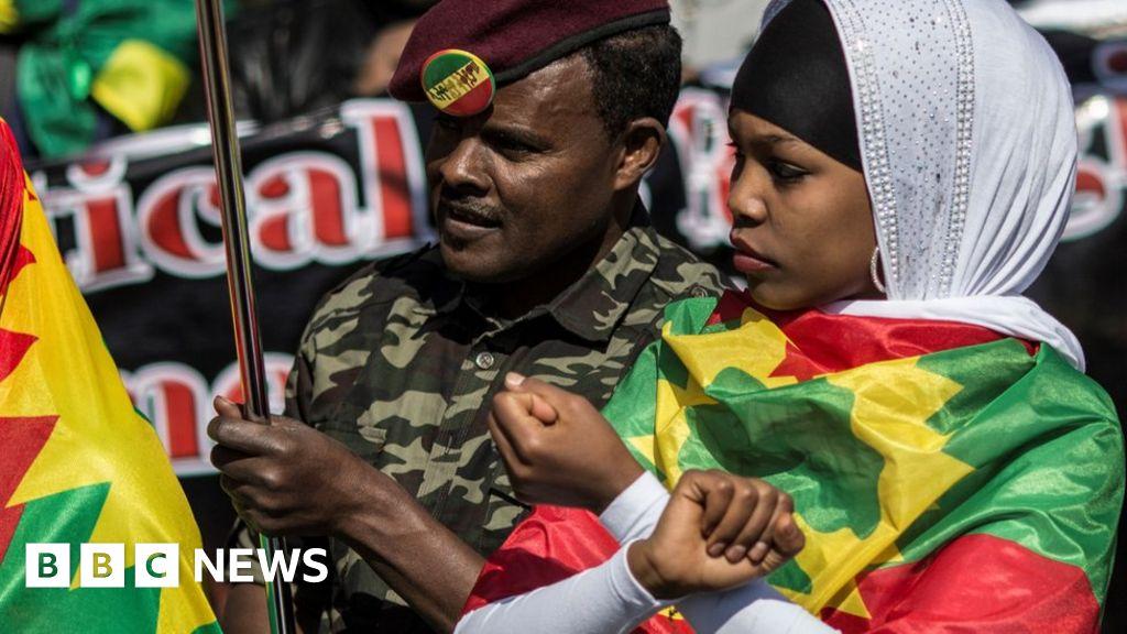 Why is the Ethiopian diaspora so influential?