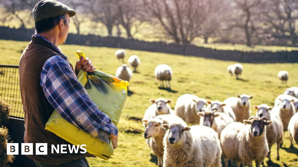 Farmers 'betrayed' by no-deal Brexit tariff plan