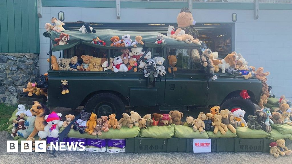 Teddy bear hunt helps distract kids under lockdown thumbnail