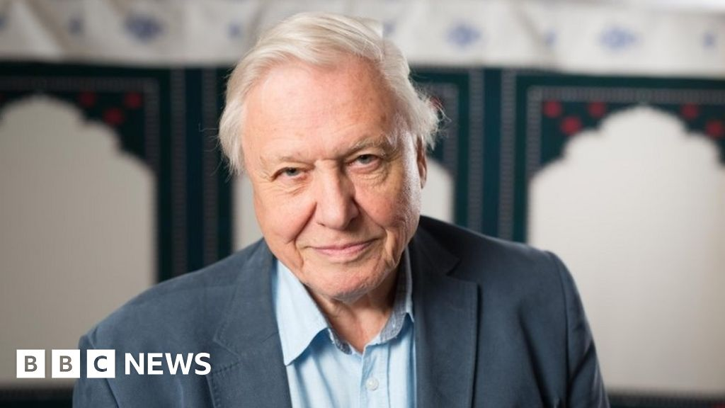 Tributes paid to Attenborough at 90