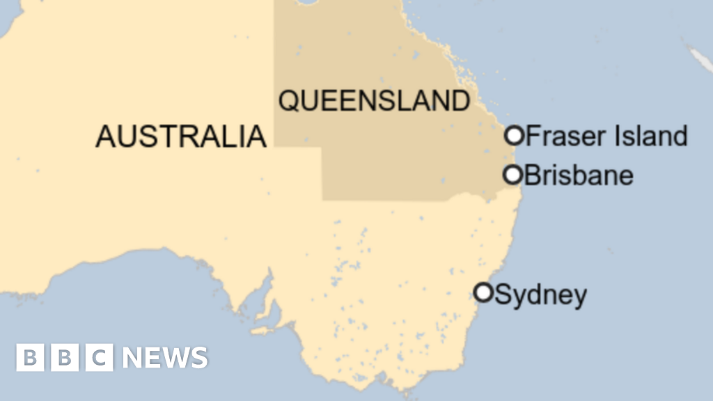 Australia shark attack: Man killed spearfishing near Fraser Island