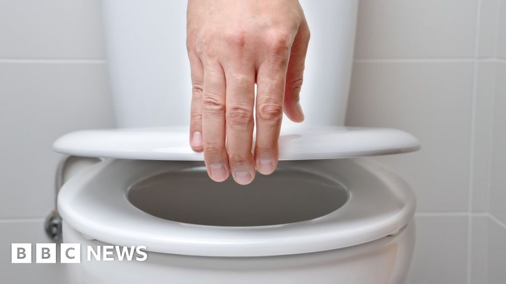 Flushing 'can propel viral infection 3ft into air' thumbnail