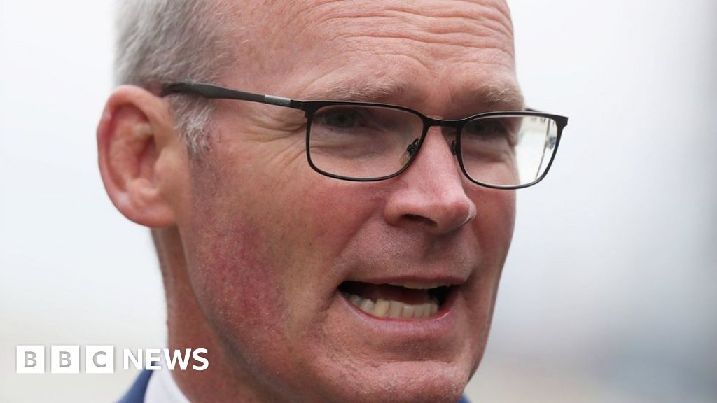Q&A: The Simon Coveney appointment row