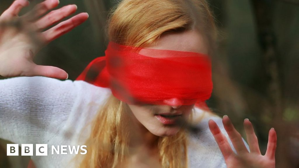US driver in 'Bird Box blindfold' crashes