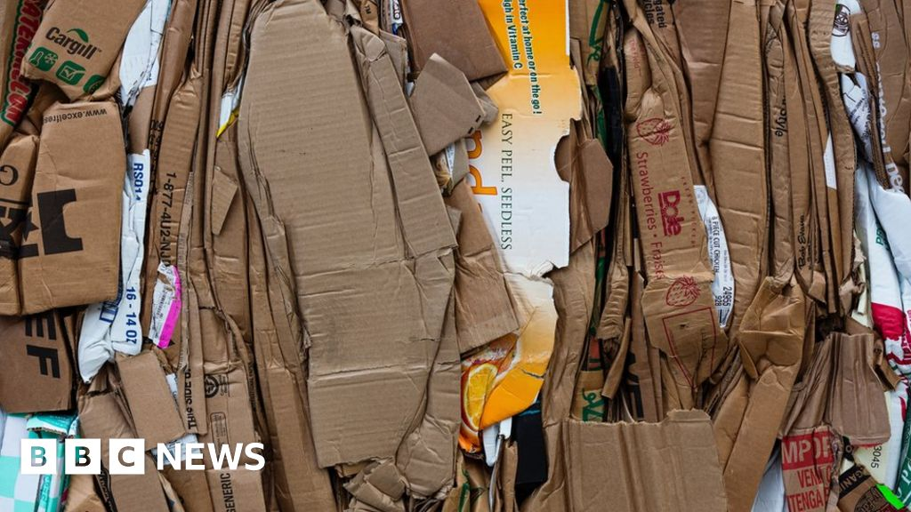 The millions being made from cardboard theft