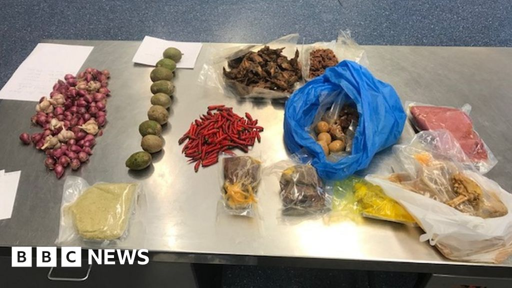 African swine fever: Australia expels Vietnamese woman over pork haul