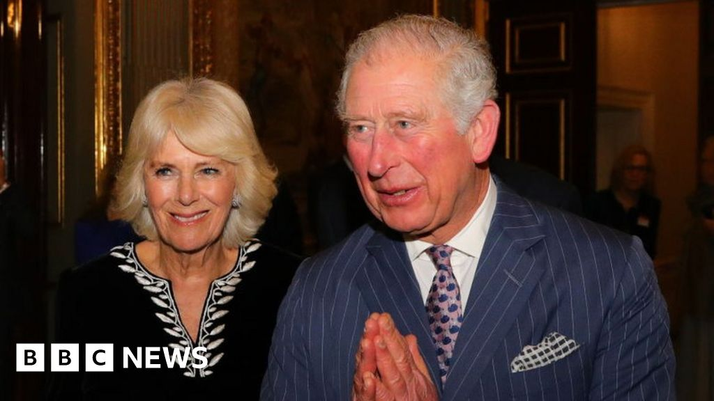 'Very good reasons' to test Prince Charles for coronavirus