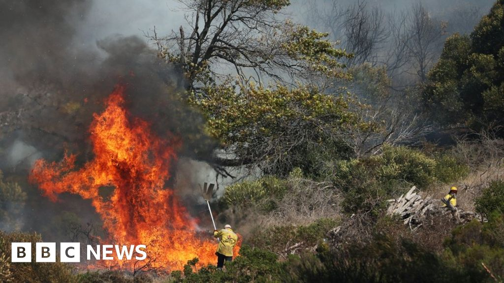 """The Table Mountain fire is """"out of control"""" in Cape Town"""
