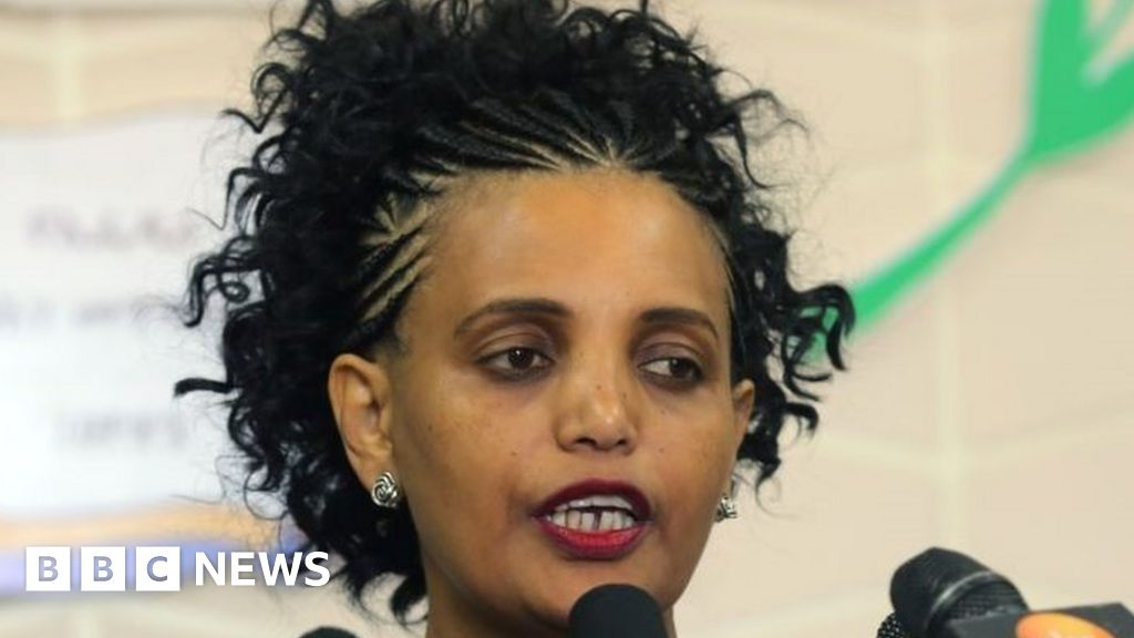 Birtukan Mideksa: President of the Ethiopian Electoral Board