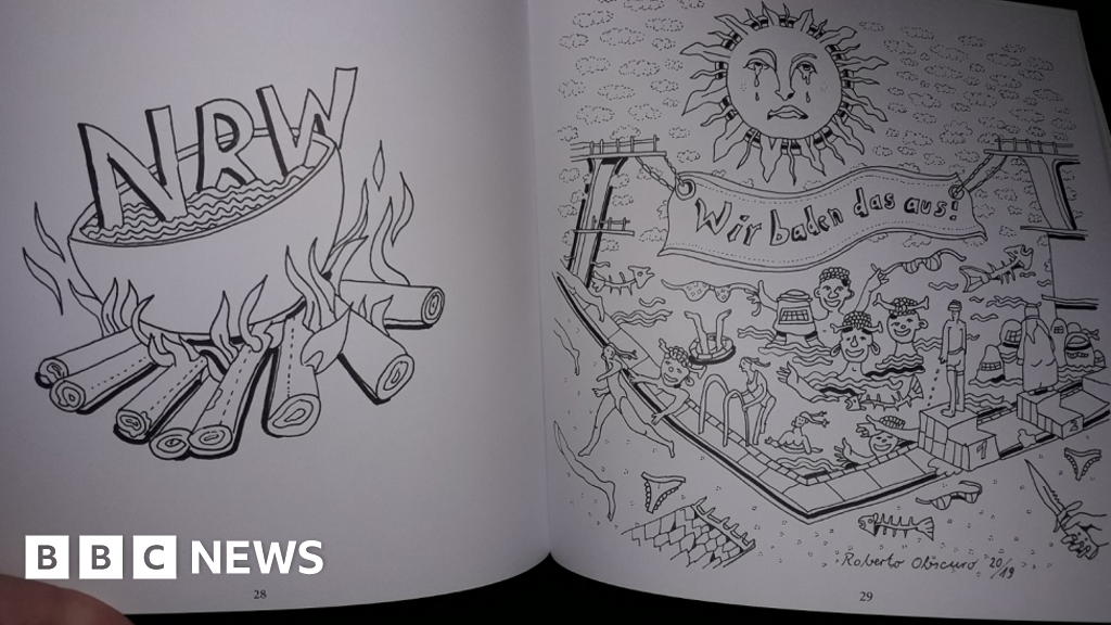 Germany's AfD probed over 'racist' colouring book