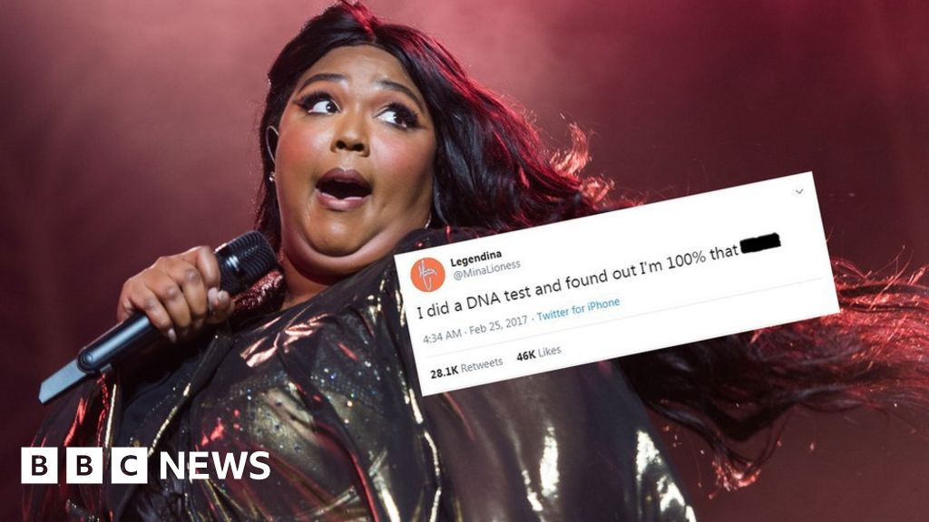 Truth Hurts: Lizzo credits writer of  DNA test  tweet