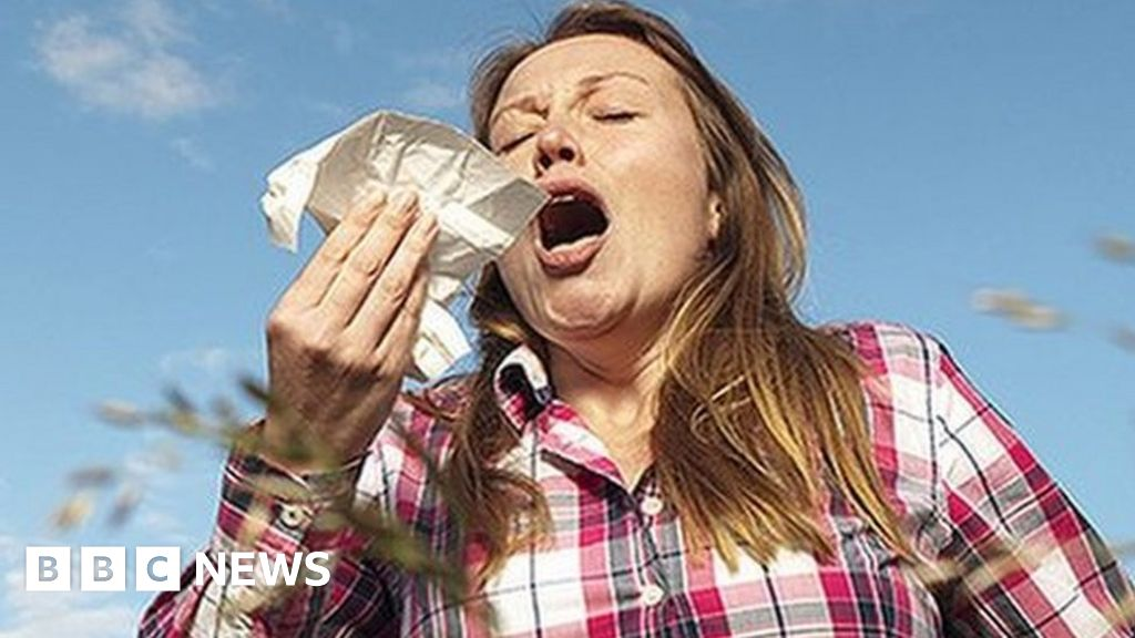 Why does my hay fever seem so bad this year?