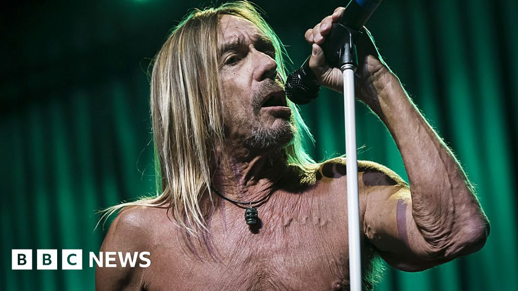 Iggy Pop has  finally got the voice I was supposed to have
