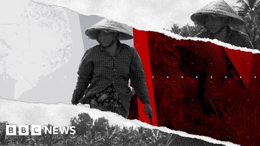 The Displaced: Climate change in Vietnam 'destroying family life' - BBC News