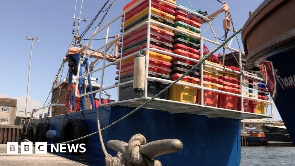 NI fishermen say incomes lost over licence delays