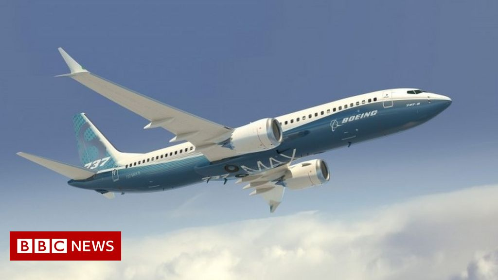 Boeing: Which airlines use the 737 Max 8? - BBC News