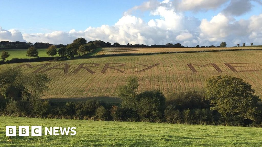 Marriage proposal ploughed into the Devon countryside - BBC News