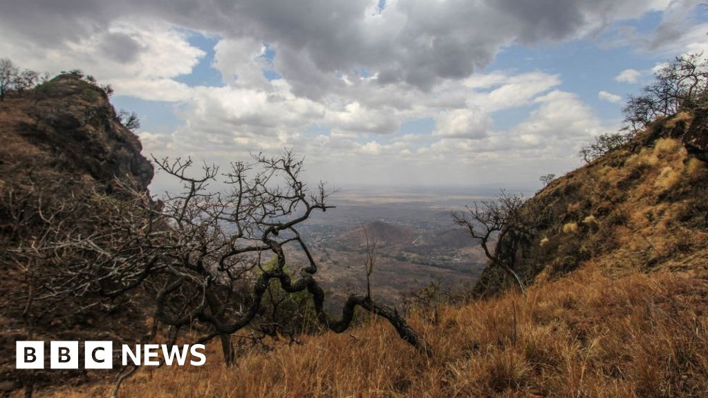 Uganda jail break: Manhunt for 'naked' Moroto prisoners
