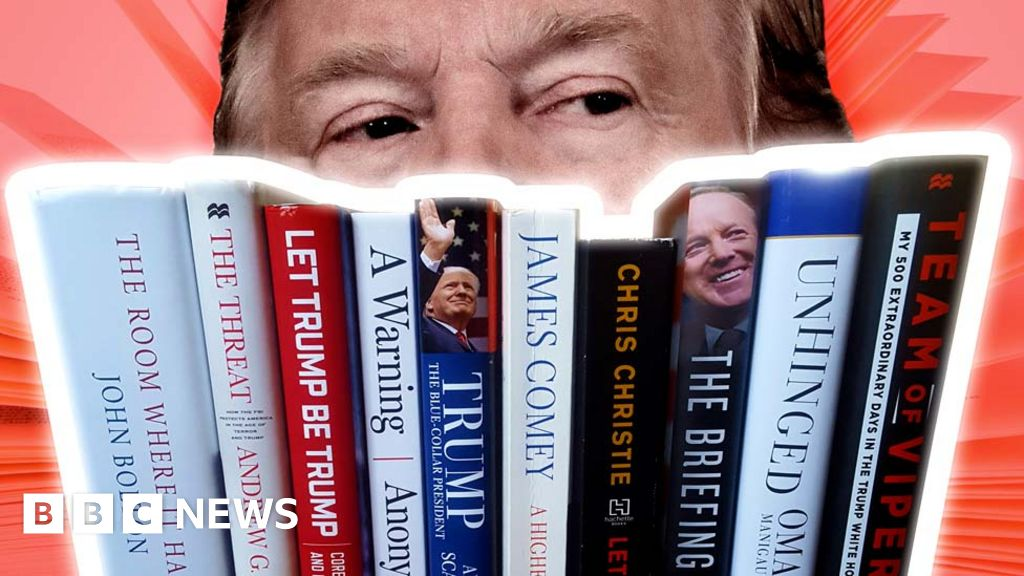 I read all those Trump tell-alls. Here s what I learned