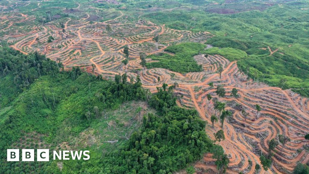 Call to end the 'abuse' of land surface thumbnail