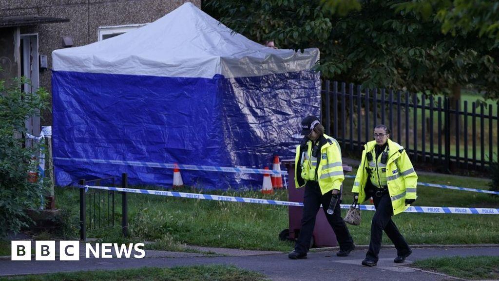 Killamarsh deaths: Dad's tribute to children found dead at house