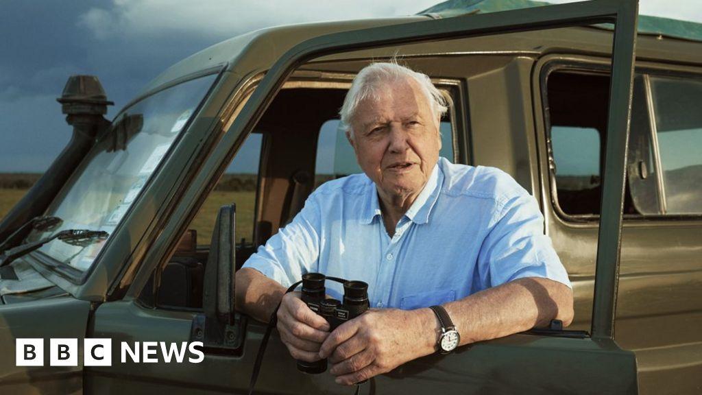 "Sir David Attenborough: ""people thought we were weirdo"