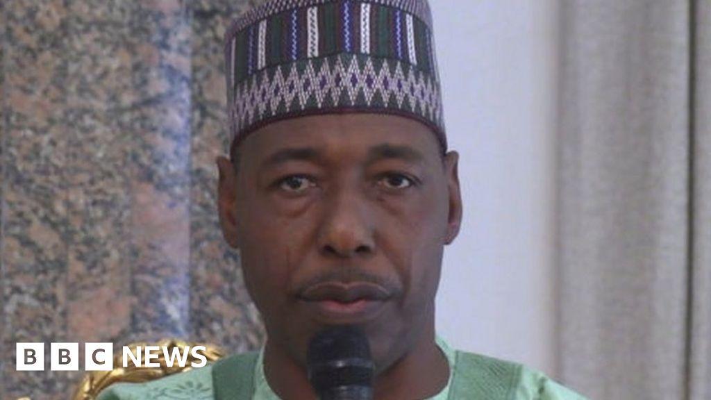 Nigeria's Boko Haram crisis: 'Bomb on donkey' used to ambush Borno governor