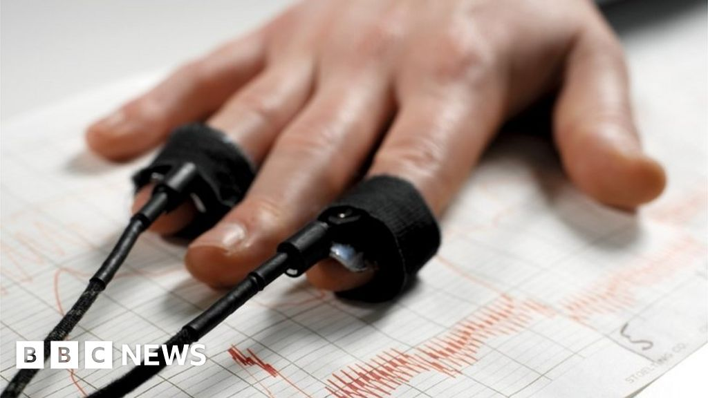 Domestic abuse: Lie-detector tests planned for offenders