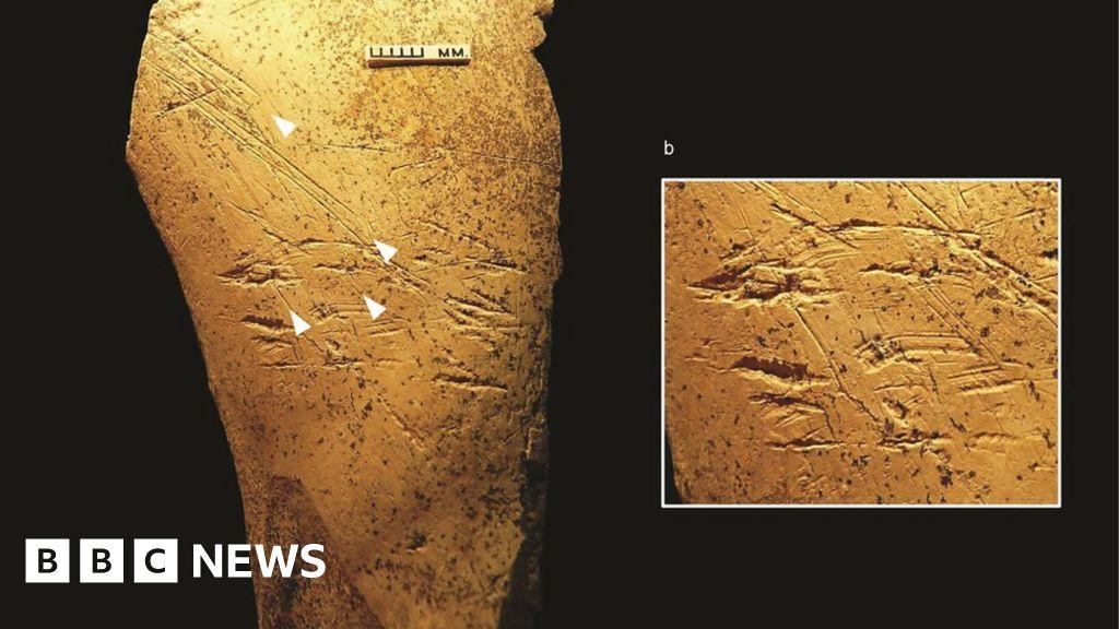 Europe's earliest bone tools found in Britain - BBC News