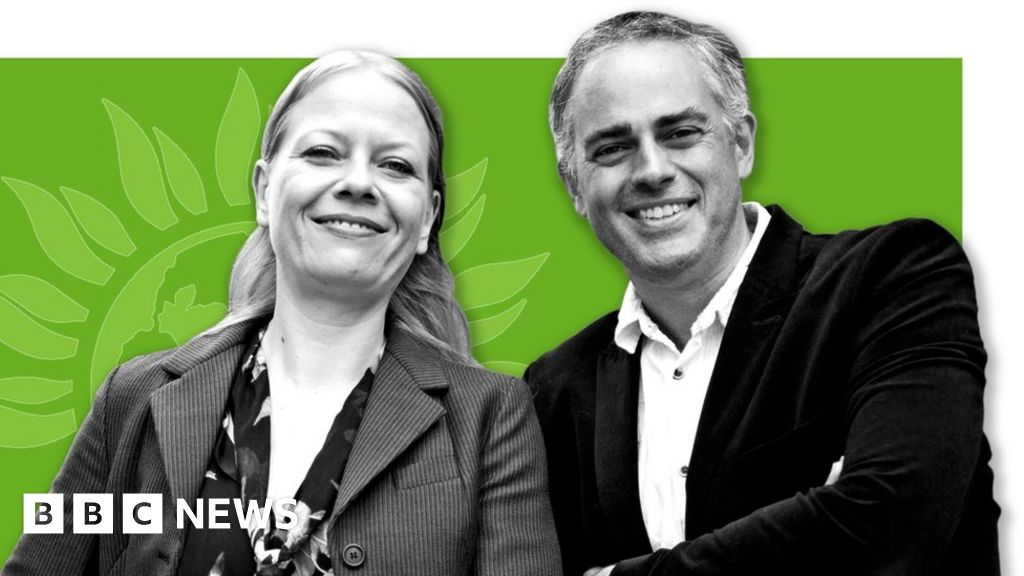 General election 2019: A simple guide to the Green Party