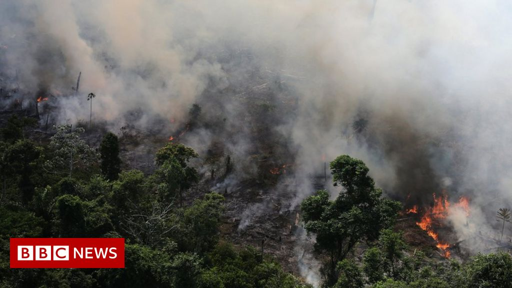 Brazilian Amazon burning at record rate, space agency warns thumbnail