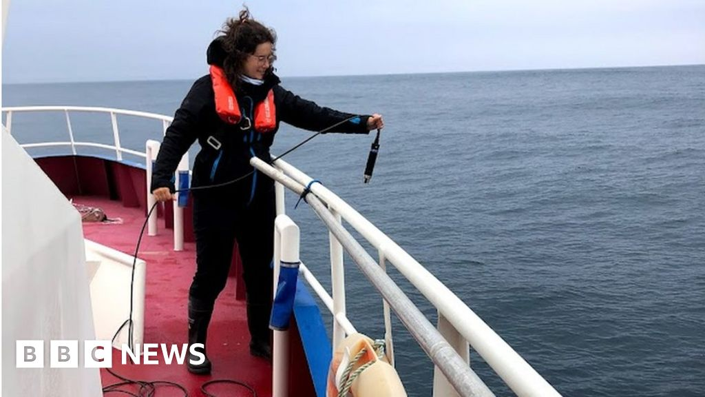 SeaMonitor: At sea with 'Europe's largest fish counter'